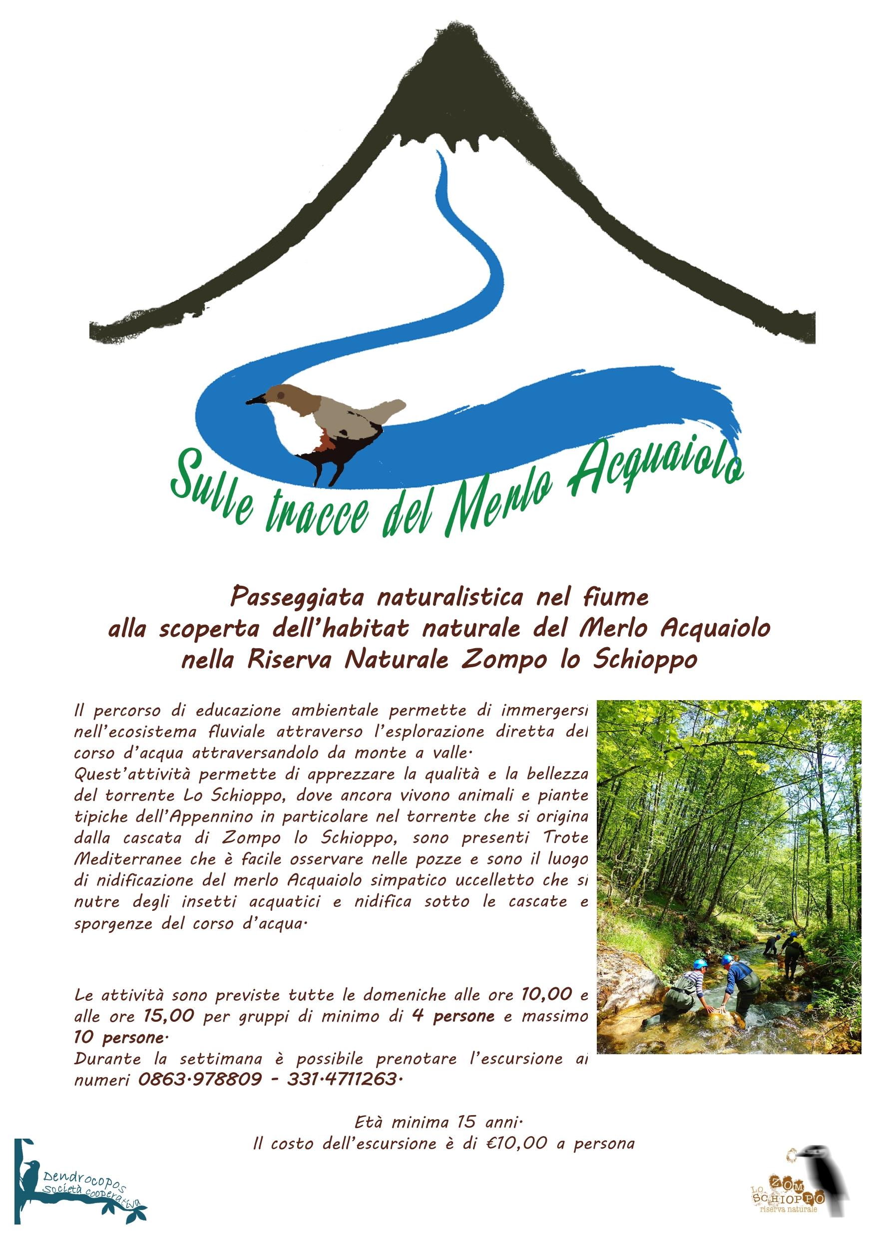 locandina merlo acquaiolo_001